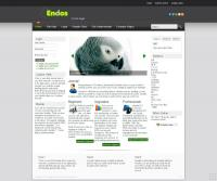 Шаблон EnDos